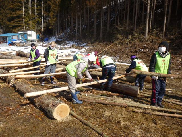 木の皮を剥ぐ作業①